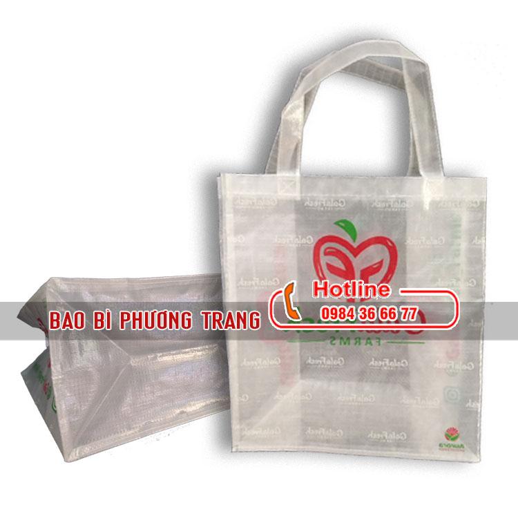 Túi PP cán màng trong mờ in ấn cao cấp cho siêu thị